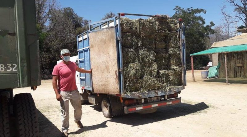 Alcalde Mauricio Viñambres dispone fardos para vecinos del sector rural